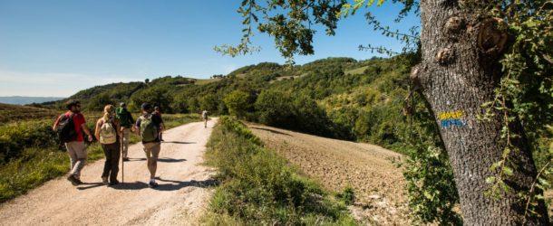 A piedi sulla Francigena, a tavola con Vetrina Toscana