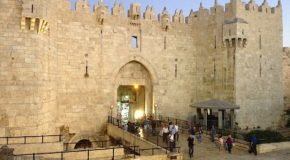 Israele e l'asino del Messia